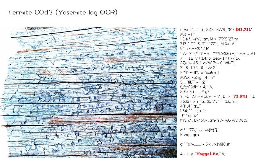 termite-c0d3-1.misha-rabinovich